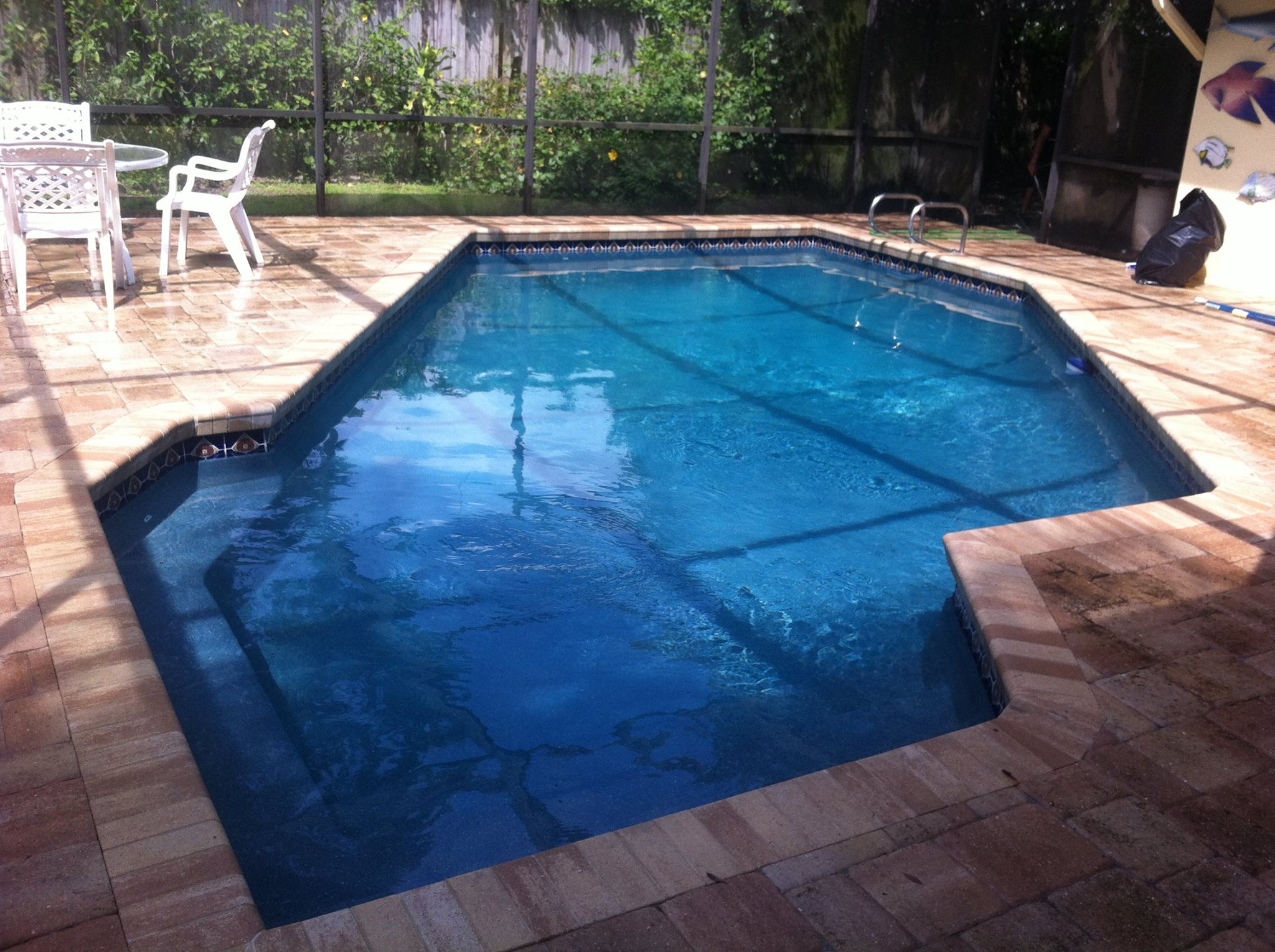 Custom pool design swimming pool builders tampa for Swimming pool builders