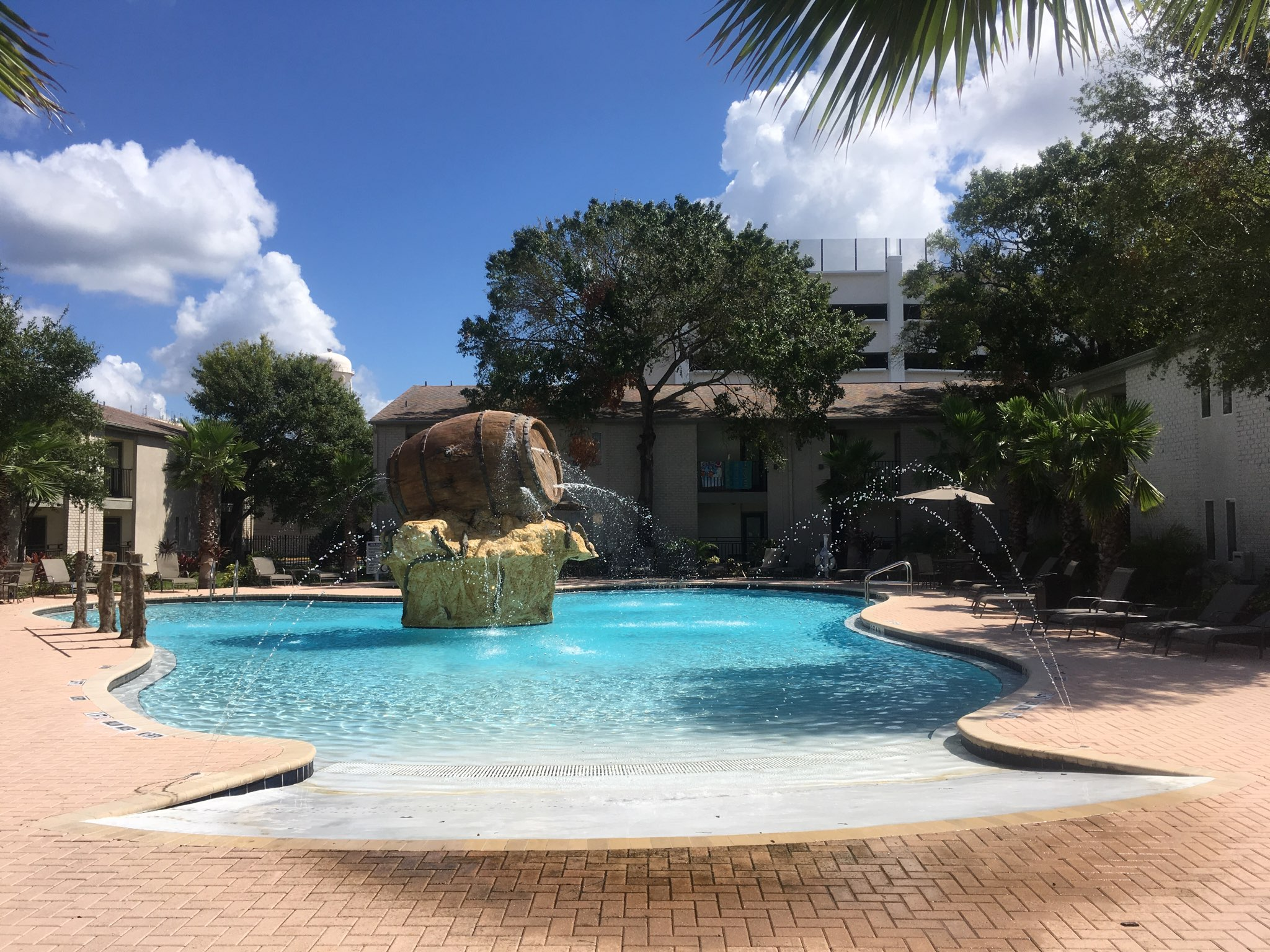 Phoenix Pools Tampa Bay 39 S Most Creative Swimming Pool Builder For Commercial Residential